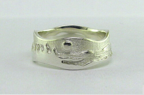 Photo - Landscape rings: Shoreline ring