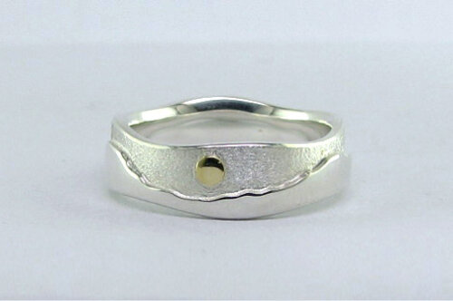 Photo - Landscape rings: Two-tone Tundra ring